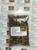 Quick Growing Tortoise Seed Mix 10g - FREE POST
